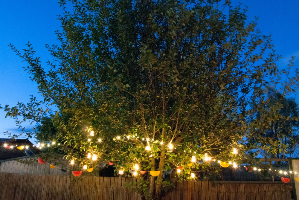 light tree-1